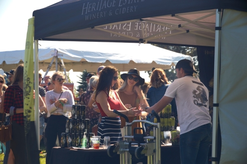 20170708 Barrie Craft Beer Fest_0197